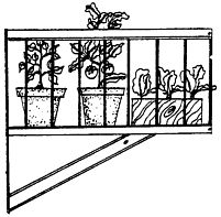 Container Garden- This site gives you suggestions on container size and sunlight exposure for growing plants indoors!