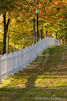 White picket fence.