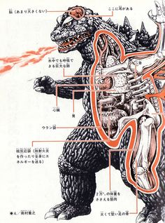 Internal Organs that Allow Giant Monsters to Breathe Fire