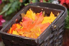 Have flower girls toss autumn leaves instead of flower petals? Budget friendly
