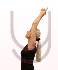 Yoga Kurse, Hatha Yoga Yoga Nidra Yoga Nidra