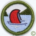 """Demerit badges - the best """"fake"""" badges!!! Not official!!! But oh so fun!!!!"""