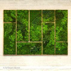 Les-tableaux-de-vegetations-vivantes-de-Erin-Kinsey-9 Les tableaux de végétations vivantes de Erin Kinsey