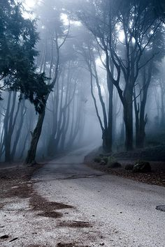 The Last Road by Jorge Maia - The Last Road Photograph - The Last Road Fine Art Prints and Posters for Sale