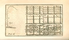 The American Gardener; or, A Treatise, On the Situation, Soil, Fencing, Laying-out of Gardens; On the Making and Managing of Hot-Beds and Gr...