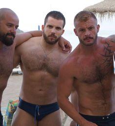 Viet nam bear gay