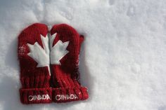 Canadian culture can sometimes be overshadowed by American culture, but that doesn't mean it doesn't exist. While American and international products are widely sold in Canada and are very popular, C. Canadian Culture, I Am Canadian, Canada Eh, Visit Canada, Backpacking Canada, Canada Travel, Hetalia, Niagara Falls New York, Northern Italy