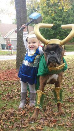 Loki dog costume!! Cute pic Jaime | boxer pics | Pinterest ...