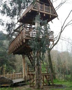 by http://ift.tt/1OJSkeg - Sardegna turismo by italylandscape.com #traveloffers #holiday | Casa sull'albero Allai  #Sardegna #sardinia #lanuovaSardegna #sardegnaexperience #igersardegna #lovesardinia #nature #love #naturegram #landscape #explore #exploring #livefolk Foto presente anche su http://ift.tt/1tOf9XD | February 16 2016 at 04:13PM (ph martino_fadda ) | #traveloffers #holiday | INSERISCI ANCHE TU offerte di turismo in Sardegna http://ift.tt/23nmf3B -