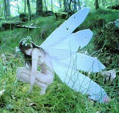 A real life fairy.  This is another option...a few of my friends with wings in front of a green screen and wind machine...could work....do some after effects on them so it looks like light is coming from their bodies....