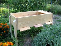 There are 3 different Hive Plans I want to pass on to the The Langstroth bee hive, patented in October is the standard beehive used in many parts of the world for beekeeping. The advantage of this hive is that the bees build honeycomb Building A Beehive, Top Bar Bee Hive, Langstroth Hive, Bee Hive Plans, Beekeeping For Beginners, Beekeeping Equipment, Raising Bees, Bee Boxes, Backyard Beekeeping