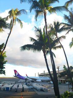 Hawaiian Airlines in HNL APO