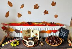 Montessori Nature Tables to Love!