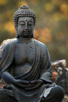 O que Buda pode nos ensinar sobre o medo de empreender: http://blog.crmzen.com.br/post/107887806946/o-que-buda-pode-nos-ensinar-sobre-o-medo-de