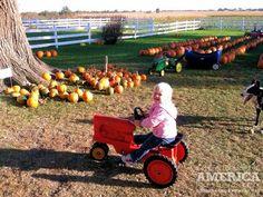 Future Farmer | Flickr - Photo Sharing!
