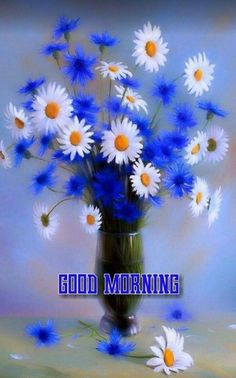 In today's post, we are presenting good morning msg. If you are searching for good morning msg you are welcome to our website. Beautiful Morning Messages, Good Morning Beautiful Pictures, Good Morning Picture, Good Morning Messages, Morning Pictures, Good Morning Images, Good Morning Tuesday, Good Morning Roses, Good Morning Msg