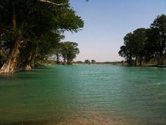 Adjuntas en Sabinas Coahuila cerca de donde se unen los rios: Alamo y Sabinas