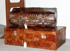 Vintage Alligator Luggage | Alligator Luggage
