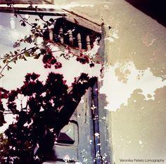 Veronika Peters  Lomography