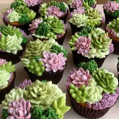 I cannot get over how gorgeous these succulent cupcakes are from You must SWIPE❣to see them all! I cannot get over how gorgeous these succulent cupcakes are from You must SWIPE❣to see them all! Fancy Cakes, Cute Cakes, Mini Cakes, Beautiful Cakes, Amazing Cakes, Cupcake Recipes, Dessert Recipes, Gourmet Cupcakes, Cactus Cake