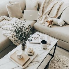 SUCH A BEAUTIFUL ROOM, WITH A GLORIOUS, VERY GENTLE BEIGE, COLOUR COMBO, STUNNING THROW, AWESOME COFFEE TABLE, SO BEAUTIFULLY DECORATED & AWESOME FURBABY!#️⃣