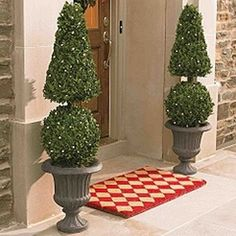 Boxwood Topiaries With Lights. So Welcoming At The Front Door