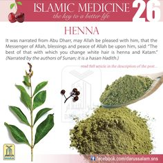Henna has been known since ancient times. The Pharaohs used it for various… Islam And Science, Health And Wellness, Health Tips, Eastern Medicine, Islam Quran, Islam Muslim, Islam Facts, Islam Religion, Coran