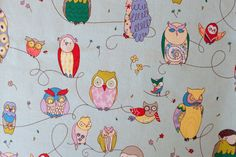 Owl Backgrounds | My favourite little owl