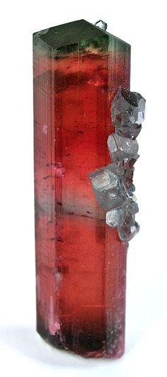 Elbaite Tourmaline with Apatite