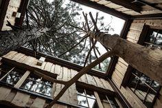 Der Natur so nah.  Architektur.  Freiraum. Wilder Kaiser, Flora, Tree Houses, Vacation, Architecture, Nature, Lawn And Garden, Plants