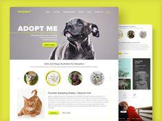 PetsHelp Website