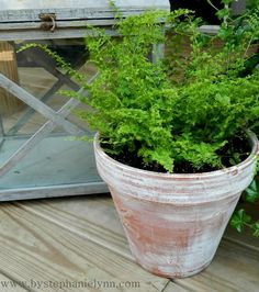 SImple tutorial on how to Distressed White Washed TerraCotta Pots