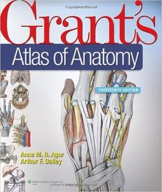 Schaums outline of human anatomy and physiology 3rd edition pdf grants anatomypdf free download file size 05400 mb fandeluxe Images