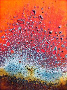 reds &oranges - images - josh martin . photographs
