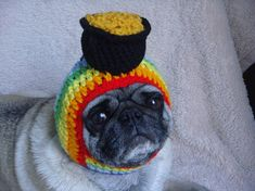 Crochet a pot of gold hat for your pup!