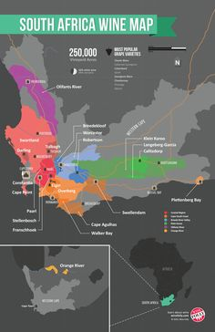 South Africa Wine Map #wineeducation #LiquorList www.LiquorList.com @LiquorListcom