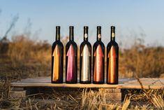 Orange Wine, Blood Orange, Red Wine, Stone Fruit, Elderflower, Wild Nature, Pinot Noir, Wine Rack, Wines