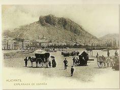 Vistas del puerto y la ciudad de Alicante, a finales del siglo XIX