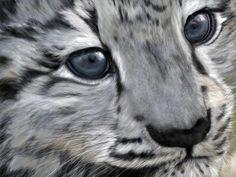 """""""Snow Leopard Cub"""""""