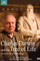 Watching movie Charles Darwin and the Tree of Life (TV Movie Streaming Movies, Hd Movies, Movie Tv, Films, Darwin Theory, Blue Planet Ii, British Broadcasting Corporation, Richard Attenborough, Imdb Tv