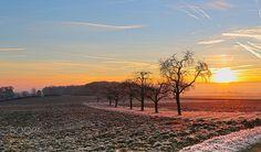 morning dew by Diana_Ruder  sky landscape sunrise morning frozen beauty winter cold blue dew sun light clouds tree beautiful whi