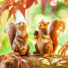 'Walnut' & 'Hazel' Garden Squirrel Ornament Pair by Animal Garden Ornaments, Best Wordpress Themes, Animal Design, Natural World, Traditional Design, Garden Inspiration, Squirrel, Garden Design, Shops