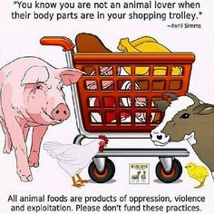 you know you are not an animal lover when their body parts are in your shopping trolley; all animal foods are products of oppression, violence and exploitation; please don't fund these practices, go #vegan