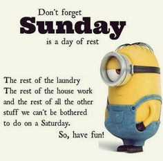 Top Funny Minions, Top Funny Minions of the hour, Free Top Funny Minions, Cute Top Funny Minions, Random Top Funny Minions Funny Minion Memes, Minions Quotes, Funny Jokes, Minion Sayings, Minions Minions, Minion Humor, Hilarious, Funny Cartoons, Sunday Quotes Funny
