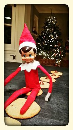 Elf on a shelf.  Thanks genius who thought of this!