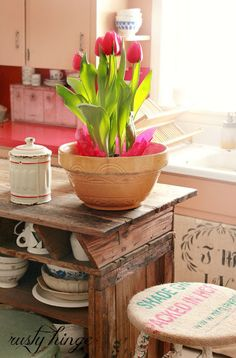 Gorgeous tulips.