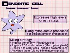 . This website is awesome! It explains the immune system simply and makes the material easy to understand.