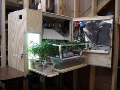 Small Closet Grow Room I Like This System It Is An Awesome Piece Of