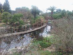 #orto #botanico #bari #ilgiardinodeitempi