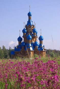 "Wild flowers in Russia. ""Summer Morning"" by Elena Mayska. 2012."